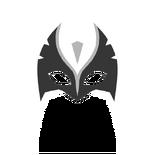 Pat-masked-falcon