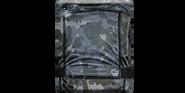 Armor-grayraider