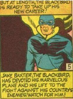 Blackbird1111