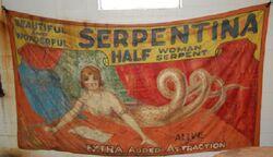 Serpentina L