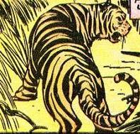 File:Tigress.jpeg