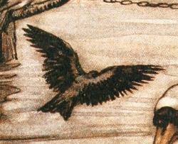 Katefinch