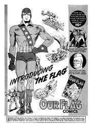 Flag 002 Promo