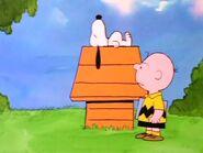 Snoopysleeps