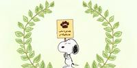 Dog Week