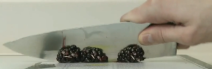 File:Blackberry knifed.png