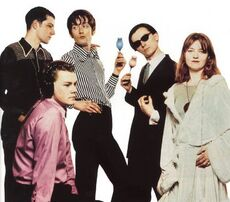 Pulp2-young