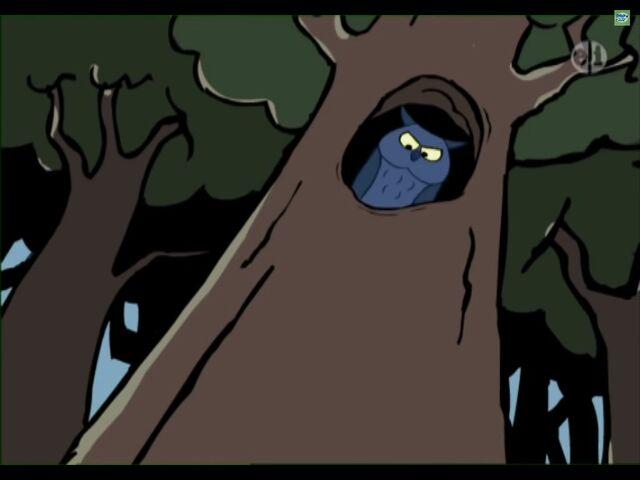 File:Hoot in tree.jpg