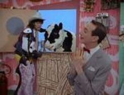 The-cowboy-and-the-cowntess-tv-episodes-photo-1