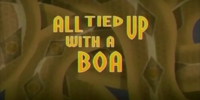 All Tied Up With a Boa/Transcript
