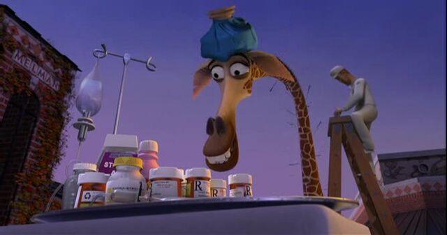 File:Giraffe 2.jpg
