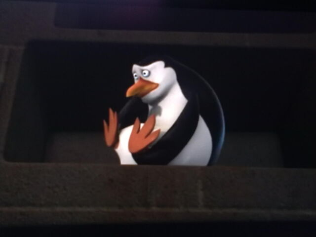 File:Rico-penguins-of-madagascar-30625731-1600-1200.jpg