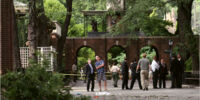 POM in the NEWS/6-month-old killed by falling branch at Central Park Zoo