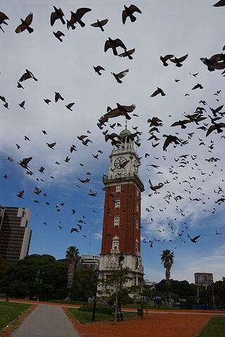 File:Torre Monumental Buenos Aires con Palomas.JPG
