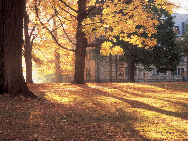 File:Autumn light.jpg