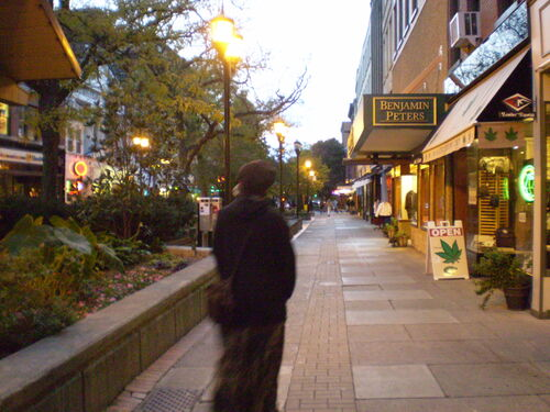Ithaca Commons, Ithaca (New York)