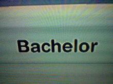 Bachelor Family