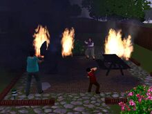 Sims House on Fire