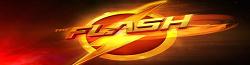 Wiki The Flash