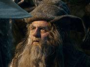 Sylvester McCoy as Radagast BOTFA