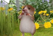 Peter-Rabbit-Shrew-Character-Image0x042781