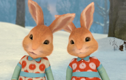 Mopsy-Flopsy-Rabbit-Peter-Rabbit's-Twin-Sisters
