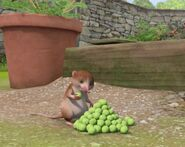 Peter-Rabbit-Character-Shrew-Eating-Peas-Image