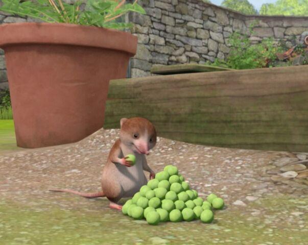 File:Peter-Rabbit-Character-Shrew-Eating-Peas-Image.jpg