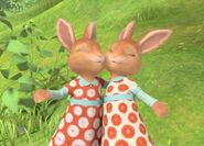 Rabbit-Twin-Sister-Together-Image
