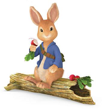 File:Peter rabbit character 6467.jpg