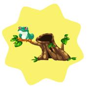 Jumping tree frog