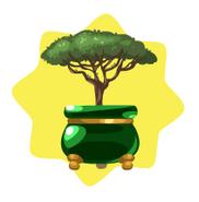 Stone Pine Bonsai