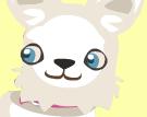 Dog head 3