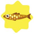 Golden sardine fish
