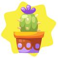 Purple potted cactus