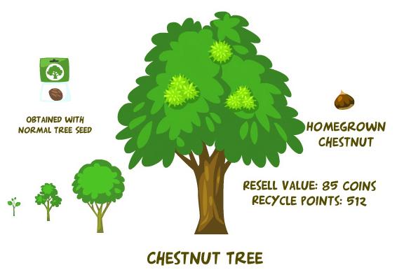 Chestnut tree summary