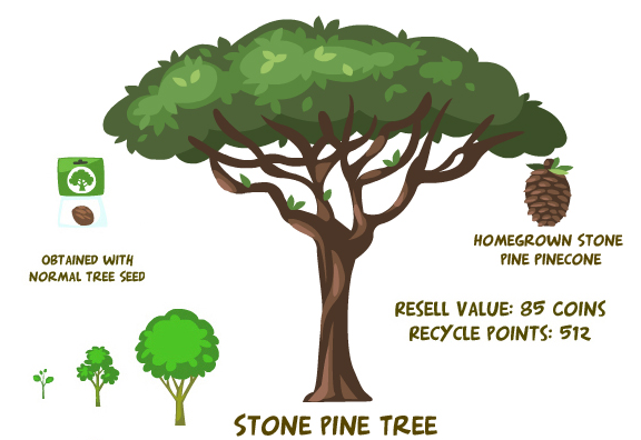Stone pine tree summary
