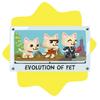 Evolution of pet poster