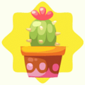 Red potted cactus