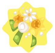 Daffodil corsage