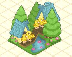 Family of Canary