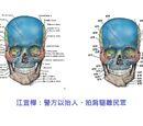 Physiology生理學 and anatomy解剖學