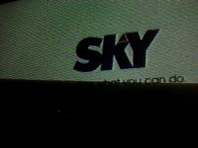 File:Skylogomain.jpg