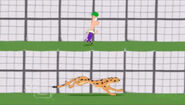 Cheetah and Ferb