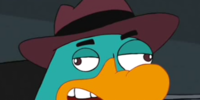 Jerry the Platypus