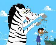 Zebra puppetmaster