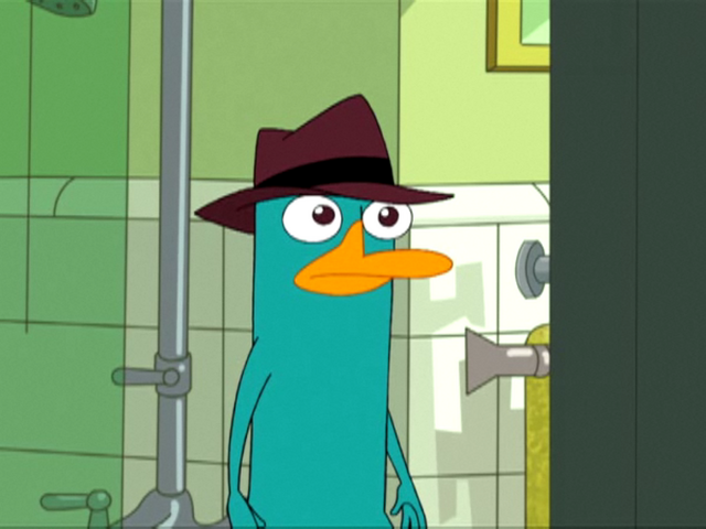 File:Perry in Ferb latin.png