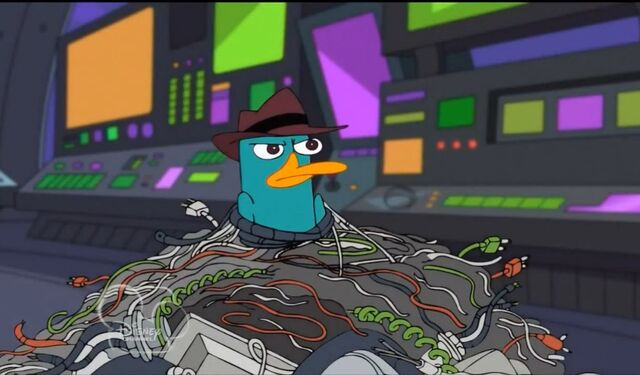 File:Cables trapped perry.jpg