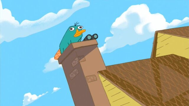 File:Perry on the roof.jpg