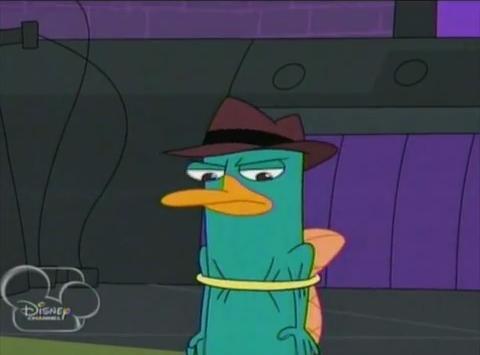 File:Perry in hoop.png